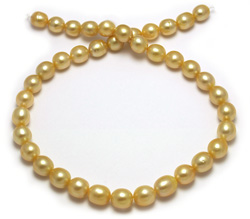 Intense Golden South Sea Pearl Necklace