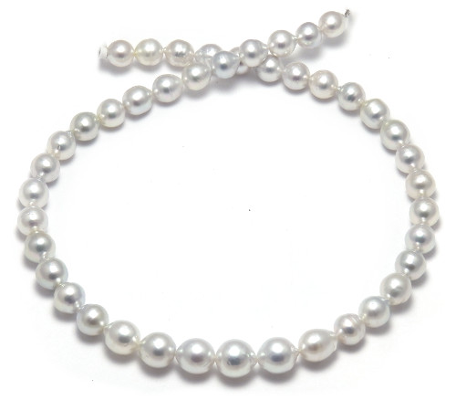 Sale White South Sea Pearl necklace
